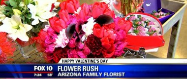 FOX10 Phoenix with Gayle Jansen – Busy, Busy, Busy Filling Orders